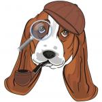 Buy the hounddog.com domain at vpminc.com